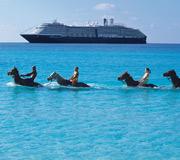 Holland American cruise.